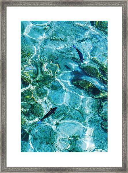 Water Meditation II. Five Elements. Healing With Feng Shui And Color Therapy In Interior Design Framed Print