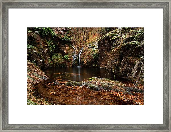 Water Paradise Framed Print