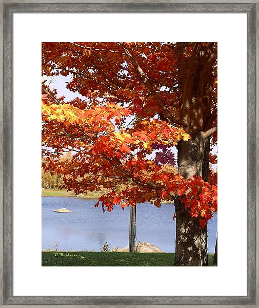 Water Skiing In Jay Vermont Framed Print
