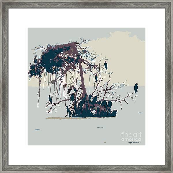Waterbirds1 Framed Print
