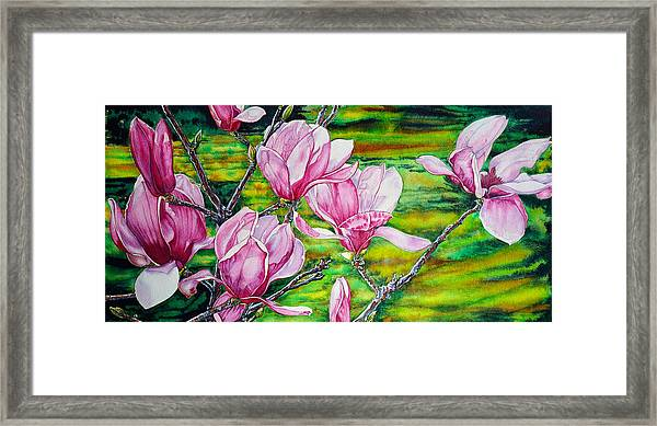 Watercolor Exercise Magnolias Framed Print
