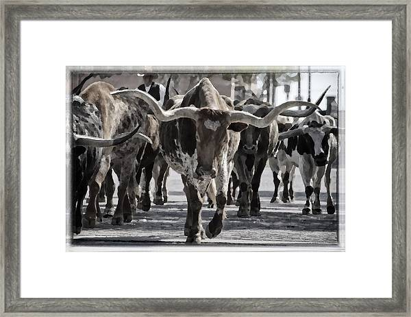 Watercolor Longhorns Framed Print