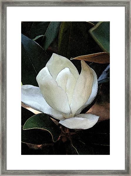 Watercolor Magnolia Framed Print