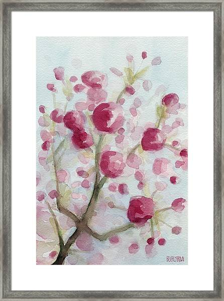 Watercolor Painting Of Pink Cherry Blossoms Framed Print