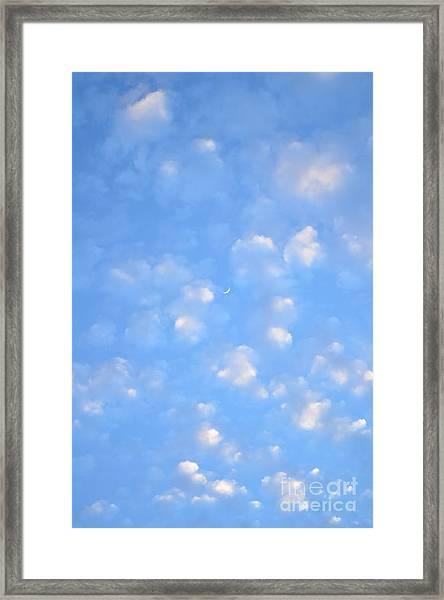 Watercolors Framed Print