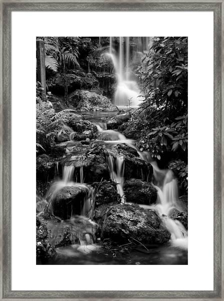 Waterfall At Rainbow Springs Framed Print
