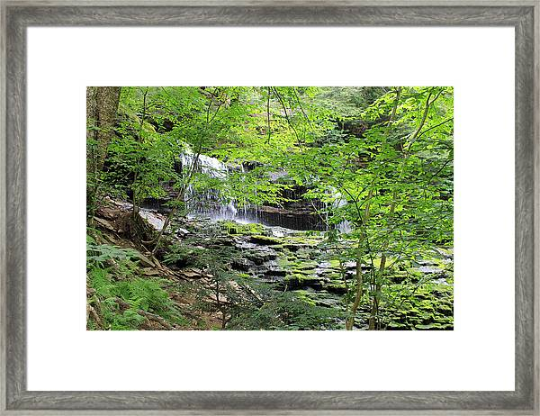 Waterfall Ricketts Glen State Park Pa Framed Print