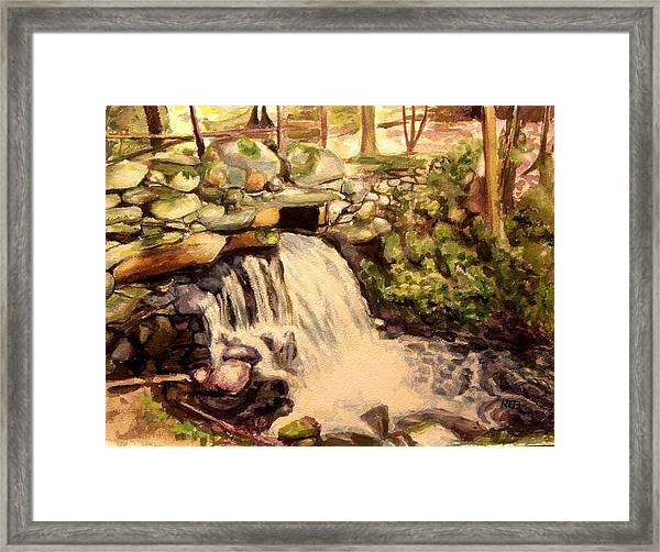Waterfall Sharon Audubon 12x16 Framed Print