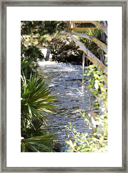Water's Edge Framed Print