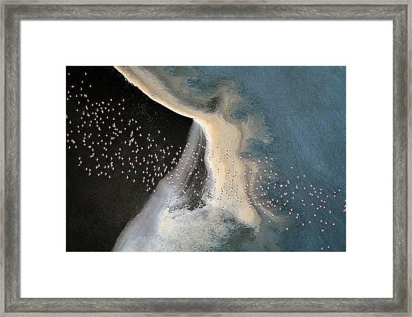 Wave Runner Iv Framed Print
