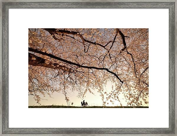 Way Back Framed Print