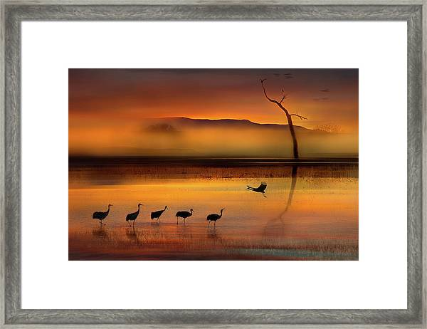 We Are Here Waiting For You Framed Print