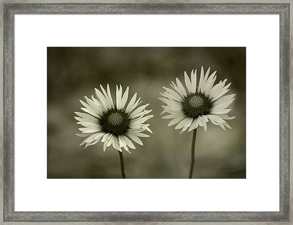 We Are Two Of A Kind Framed Print