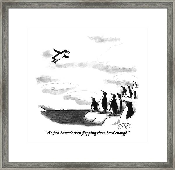 We Just Haven't Been Flapping Them Hard Enough Framed Print