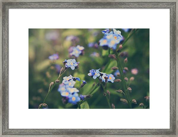 We Lay With The Flowers Framed Print