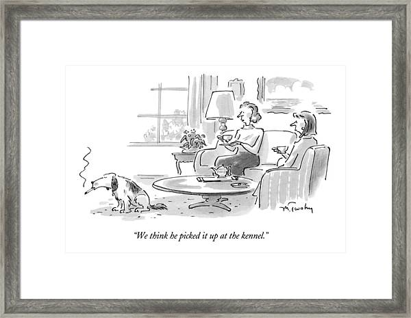 We Think He Picked It Up At The Kennel Framed Print