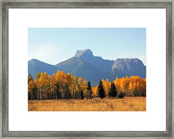 Wedge Mountain And Aspen Framed Print