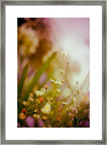 Weeded Desire - Light Framed Print