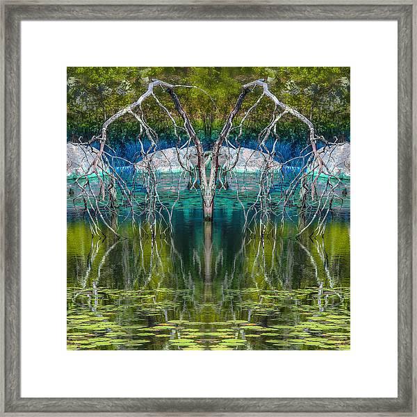 Weeping Framed Print by David Phoenix