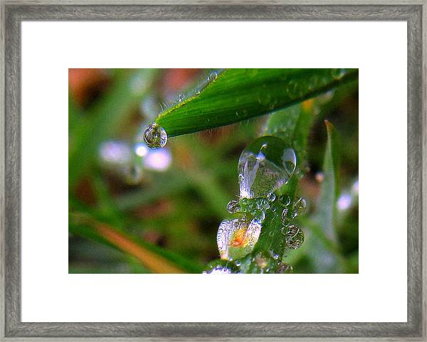 Weird Drops Framed Print