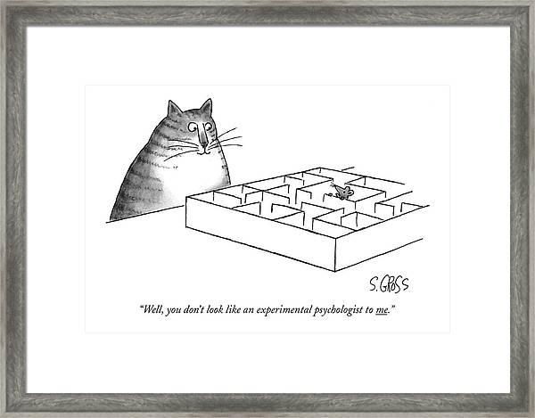 Well, You Don't Look Like An Experimental Framed Print