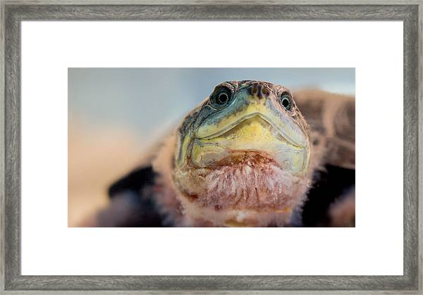 Were You Looking At Framed Print
