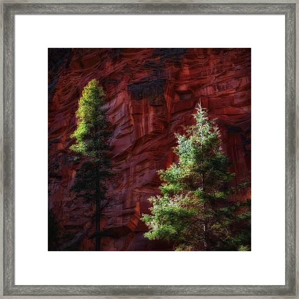 West Fork Rock Face Number Three Framed Print
