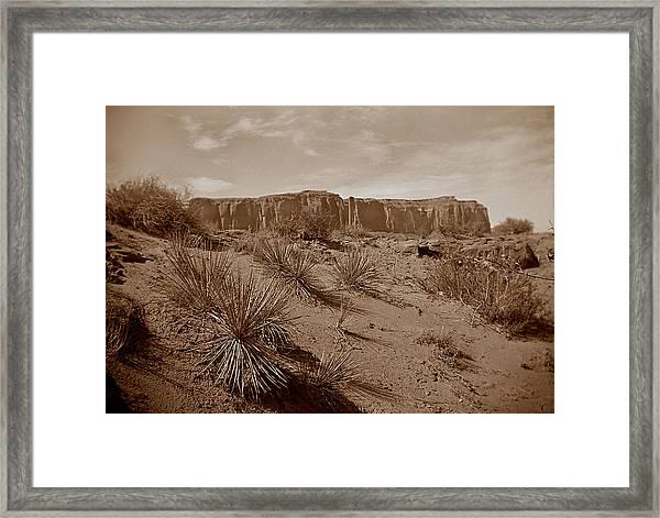 West006 Framed Print