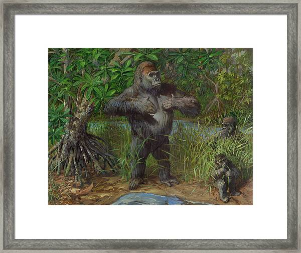 Western Lowland Gorilla Framed Print by ACE Coinage painting by Michael Rothman