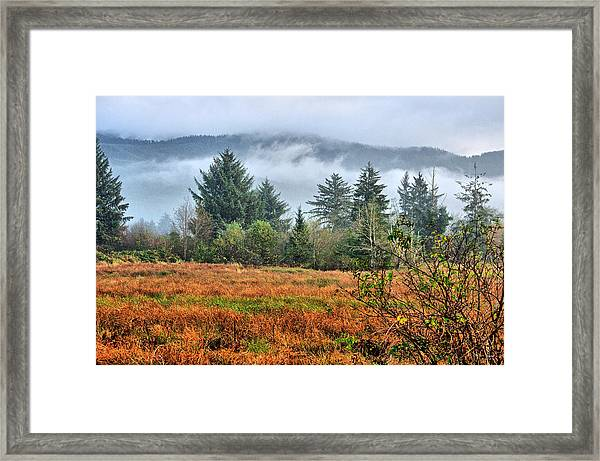 Wetlands In The Fall Framed Print