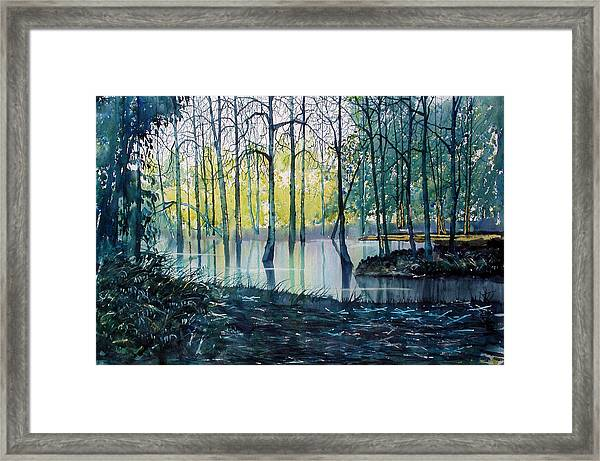 Wetlands On Skipwith Common Framed Print