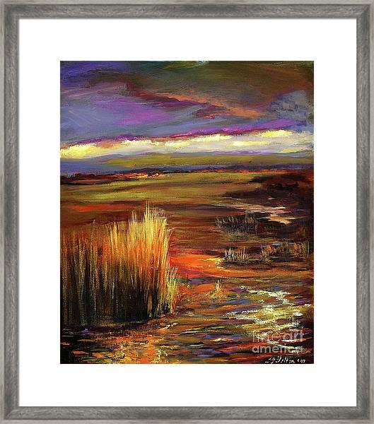 Wetlands Sunset Iv Framed Print