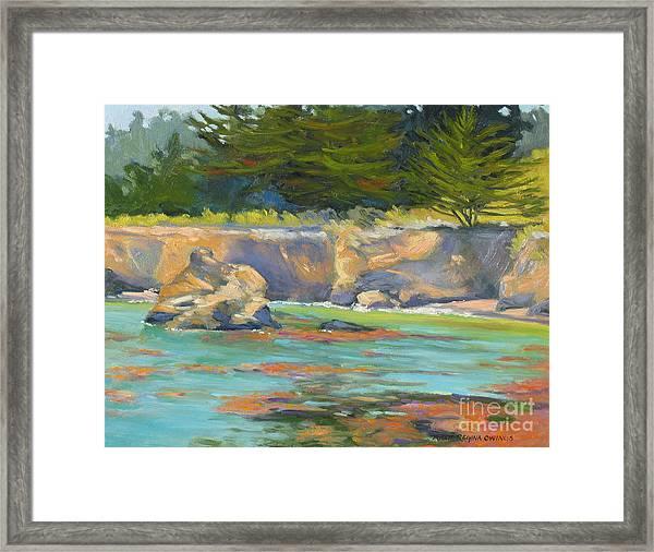 Whalers Cove Point Lobos Framed Print by Rhett Regina Owings