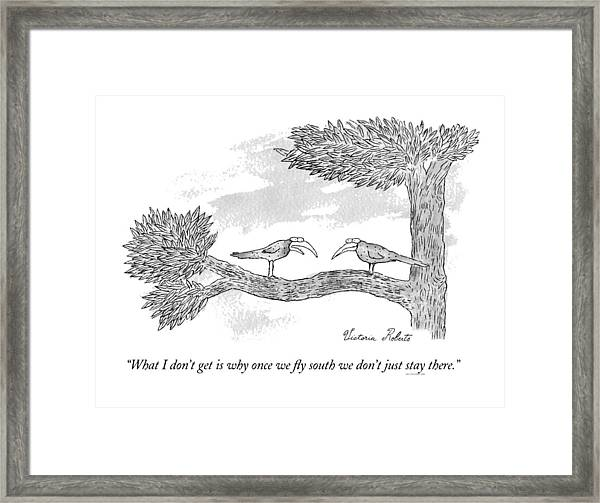 Once We Fly South Framed Print