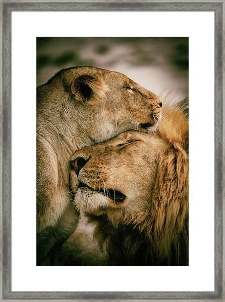 What Is Love Framed Print by Mohammed Alnaser
