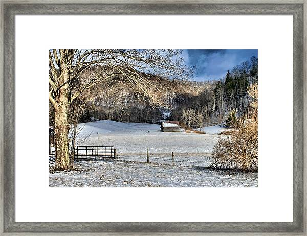 What More Could You Ask For Framed Print
