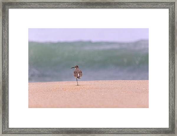What Wave By Denise Dube Framed Print