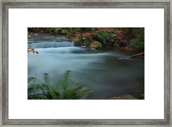 Whatcom Falls Park Framed Print
