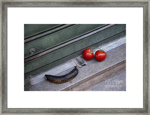 Whats The Story Here Framed Print