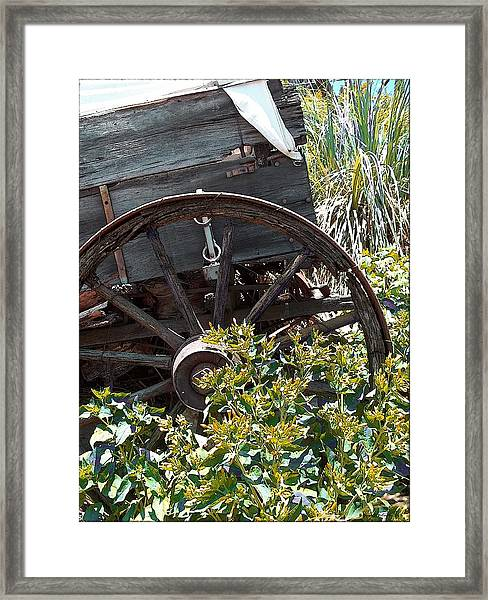 Wheels In The Garden Framed Print