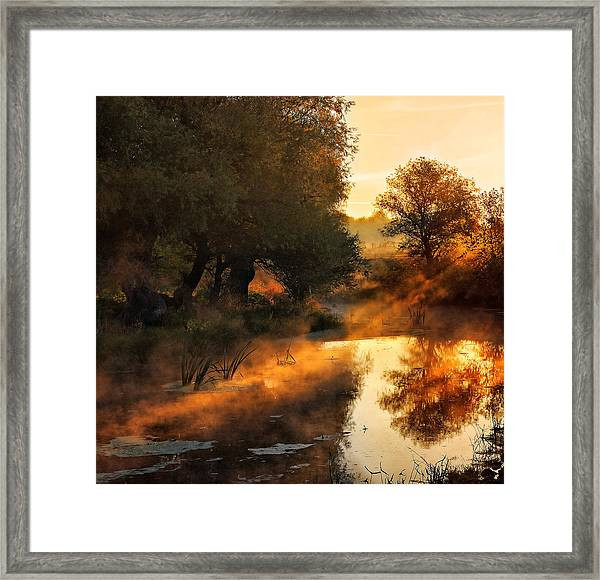 When Nature Paints With Light Framed Print by Jimbi