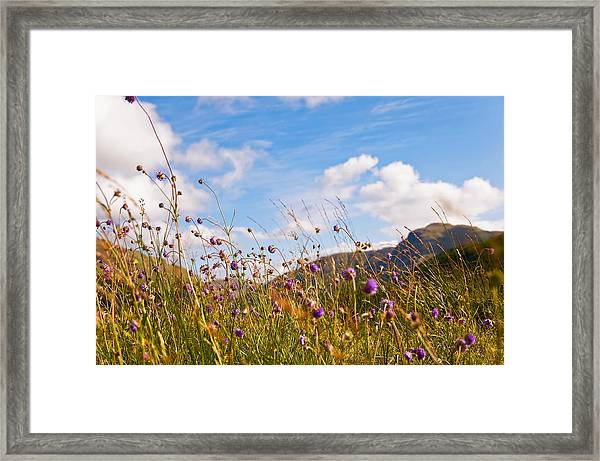 When The Sun Is Shining Everything Around Smiling Towards. Scotland Framed Print