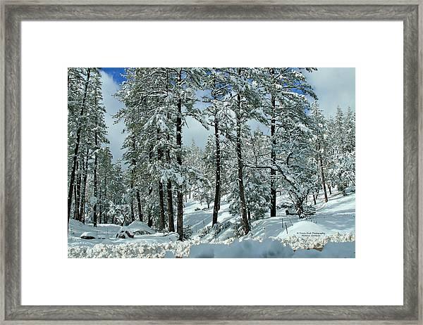 Whispering Snow Framed Print