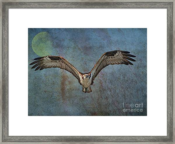 Whispering To The Moon Framed Print