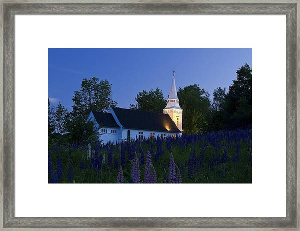 White Church At Dusk In A Field Of Lupines Framed Print