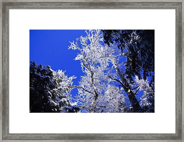 White Crystal Framed Print