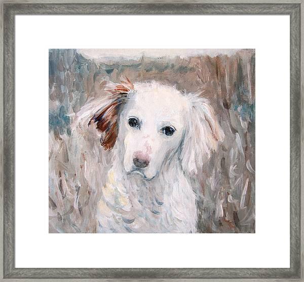 White Dog # 2 Framed Print