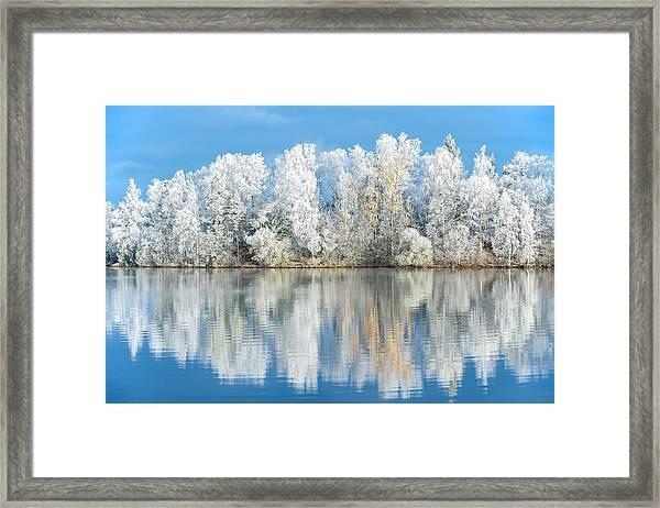 White Frost Framed Print