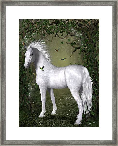 White Horse In The Woods Framed Print