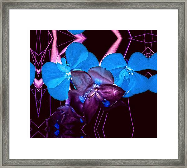 White To Blue Framed Print
